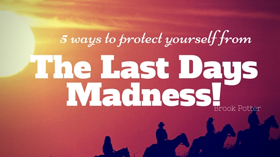 The Last Days Madness