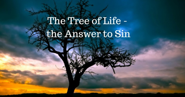the answer to sin