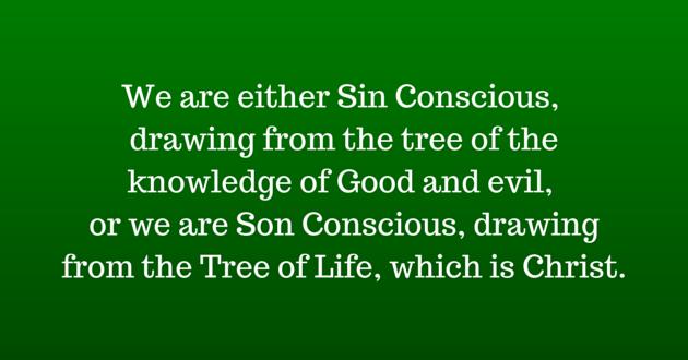 Sin Conscious